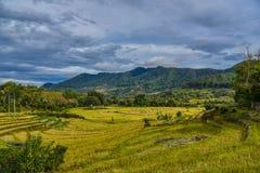 Beau paysage de Sumatra photo stock