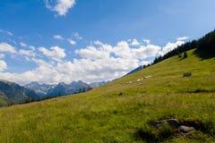 Beau paysage de Tatry Rusinowa Polana Photographie stock libre de droits