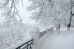 Beau paysage de ville d'hiver pendant la tempête de neige Photos stock
