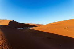 Beau paysage de Vlei caché dans le désert de Namib Image libre de droits