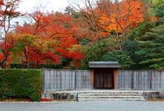 Beau paysage des arbres d'érable ardents par la porte et la barrière en bois à l'entrée aux jardins japonais image stock