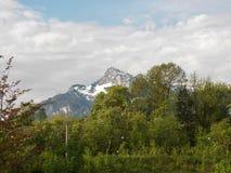 Beau paysage des montagnes alpines Schloss Arenberg image stock