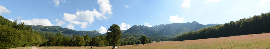 Beau paysage des montagnes carpathiennes en Roumanie, vue de panorama image libre de droits