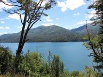 Beau paysage des montagnes et des lacs entourés par des arbres et branches dans Bariloche, Argentine Image stock