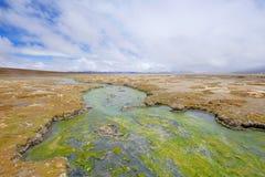 Beau paysage du Hot Springs Polloquere, lac de sel de Salar De Surire, Isluga Volcano National Park, Chili Image libre de droits