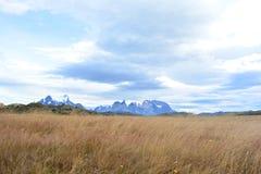 Beau paysage en parc national de Torres del Paine, Chili photo stock