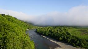 Beau paysage ensoleillé de vallée avec la crique large de montagne entre les arbres verts avec le ciel bleu clair image stock