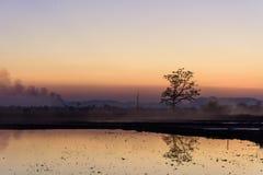 Beau paysage et pré de coucher du soleil images libres de droits