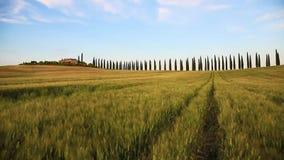 beau paysage fabuleux avec des transitoires dans le domaine venteux, en Toscane, l'Italie clips vidéos