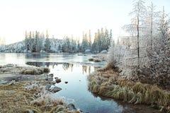 Beau paysage haut Tatras d'hiver Photographie stock