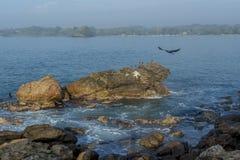 Beau paysage marin étonnant des roches dans l'océan photos stock