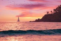 Beau paysage marin d'été - ciel rose au coucher du soleil, mer chaude, voilier sur l'horizon, silhouette de palmier photos stock