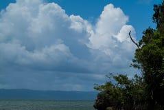 Beau paysage marin, nuages blancs dans le ciel, peu d'arbres dans le premier plan Photographie stock libre de droits