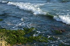Beau paysage marin sicilien, la mer Méditerranée, Donnalucata, Scicli, Raguse, Italie, l'Europe photographie stock libre de droits