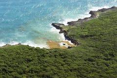 Beau paysage : mer, côte, parc national dominicain, algue images libres de droits