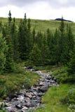 Beau paysage montagneux de la Norv?ge image libre de droits