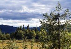 Beau paysage montagneux de la Norv?ge photos libres de droits
