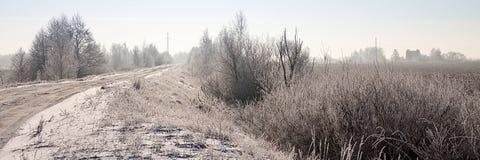 Beau paysage neigeux d'hiver Photos libres de droits