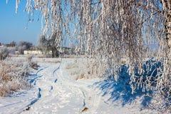 Beau paysage neigeux d'hiver Photographie stock