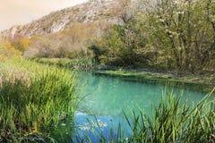 Beau paysage pittoresque d'automne de rivière dans la montagne image libre de droits