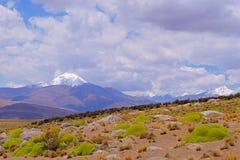 Beau paysage près du lac de sel de Salar De Surire, Isluga Volcano National Park, Chili Photographie stock