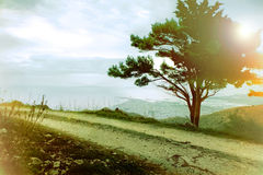 Beau paysage rêveur Photo libre de droits