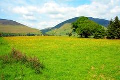 Beau paysage rural, district de lac photo libre de droits
