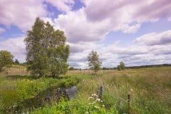 Beau paysage rural en été images libres de droits
