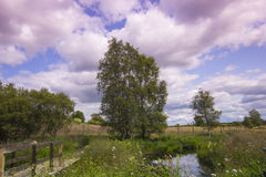 Beau paysage rural en été photos stock