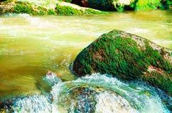 Beau paysage scénique de vallée d'Aisttal sur la rivière d'Aist en Haute-Autriche en été Mousse vibrante de verdure de lumière du photographie stock