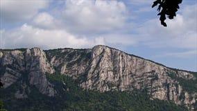 Beau paysage sur la gorge de Danube Banque serbe du Danube clips vidéos