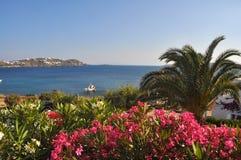 Beau paysage sur les mykonos grecs d'île Image stock