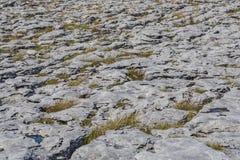 Beau paysage uniquement rigide de Karst du Burren Photographie stock libre de droits