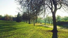 Beau paysage vert photos stock