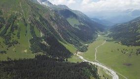 Beau paysage vert de montagne avec des arbres Vue supérieure de forêt sur la montagne en montagnes clips vidéos