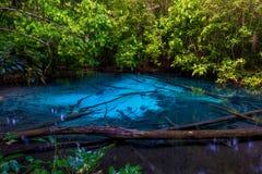 Beau paysage - vue d'un lac bleu dans les jungles de Krab Photo stock