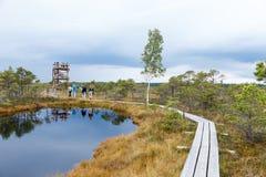 Beau petit lac en parc national de Kemeri, Lettonie, avec une réflexion de ciel dans la surface de l'eau Image stock