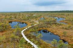 Beau petit lac en parc national de Kemeri, Lettonie, avec une réflexion de ciel dans la surface de l'eau Photographie stock
