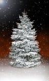 Beau pin couvert en neige et glace la nuit Images stock