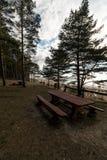 Beau pique-nique éloigné et tache campante près d'une mer baltique dans une forêt de pin avec une plage de rocher à l'arriè photo libre de droits