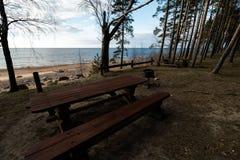 Beau pique-nique éloigné et tache campante près d'une mer baltique dans une forêt de pin avec une plage de rocher à l'arriè image stock