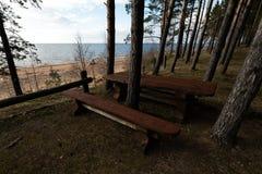 Beau pique-nique éloigné et tache campante près d'une mer baltique dans une forêt de pin avec une plage de rocher à l'arriè images stock