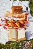 Beau pique-nique avec du vin rosé, les croissants français et les baies fraîches photographie stock