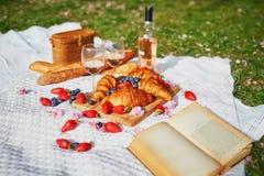 Beau pique-nique avec du vin ros?, les croissants fran?ais et les baies fra?ches photographie stock libre de droits