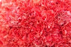 Beau plan rapproch? de f?te de bouquet Bouquet lumineux des fleurs rouges comme cadeau image libre de droits