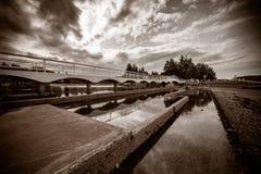 Beau pont dans la sépia Photos libres de droits