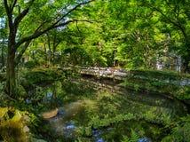 Beau pont en bois à Kyoto photographie stock libre de droits