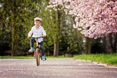 Beau portrait de petit garçon caucasien adorable, montant un Bi image libre de droits