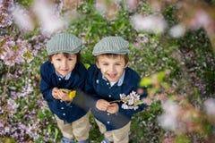 Beau portrait des enfants préscolaires d'un jeune tenant des fleurs Photo stock