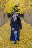 Beau Posing In modèle blond un champ des feuilles jaunes Photographie stock libre de droits